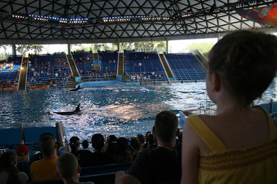 Sea World (26)