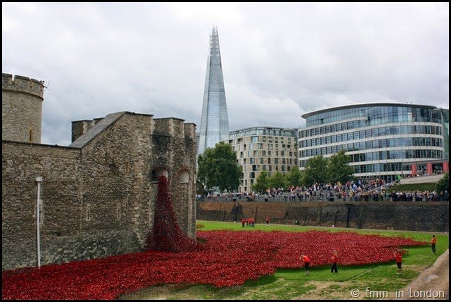 The Tower, the Shard and the Poppies