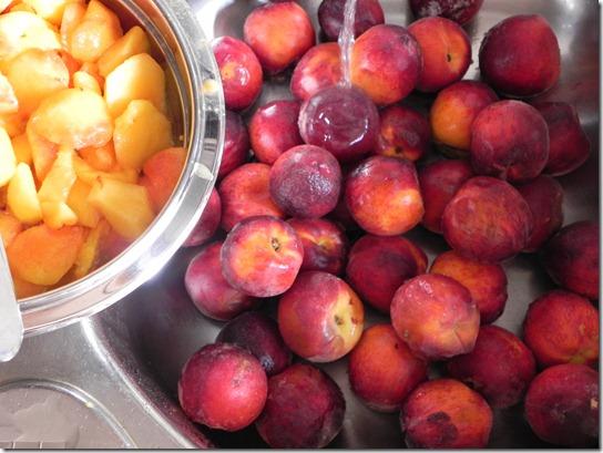 polenta-peach-cake-2