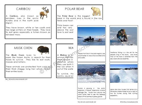 PolarReg2