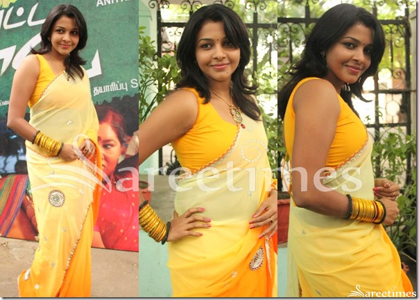 Saranya_Nag_Dual_Color_Saree