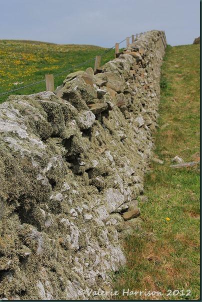 61-stone-wall
