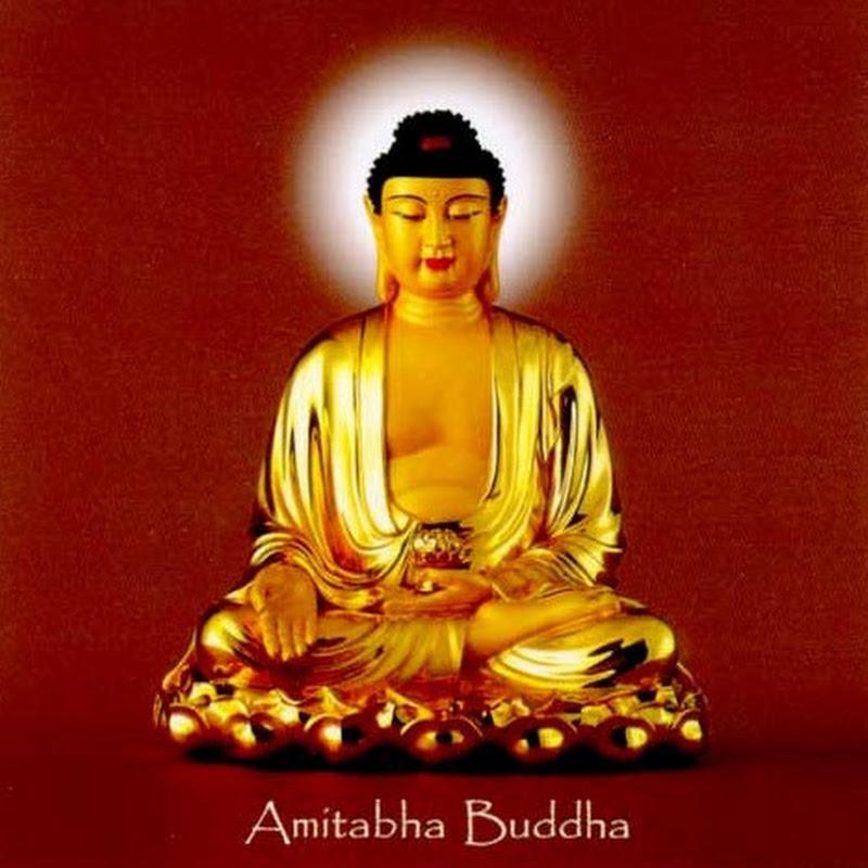 Bộ ảnh Đức Phật A Di Đà chất lượng đầy đủ nhất
