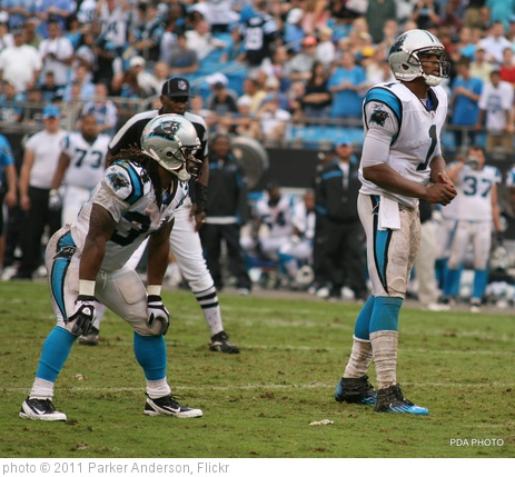 'Cam Newton DeAngelo Williams' photo (c) 2011, Parker Anderson - license: http://creativecommons.org/licenses/by-nd/2.0/