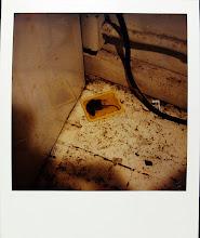jamie livingston photo of the day January 31, 1986  ©hugh crawford