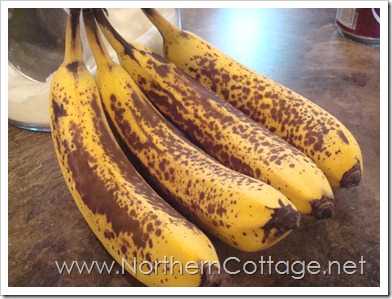 nanners @ northerncottage.net