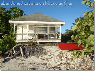 How beautiful is this, Nicholas Cay, Belize