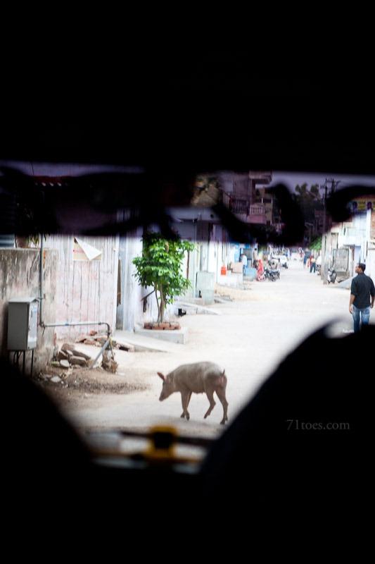 2012-07-27 India 57588
