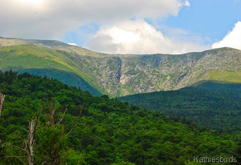 9. tuckerman's ravine-kab