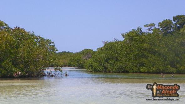 Viaje Mexico Isla Holbox 4