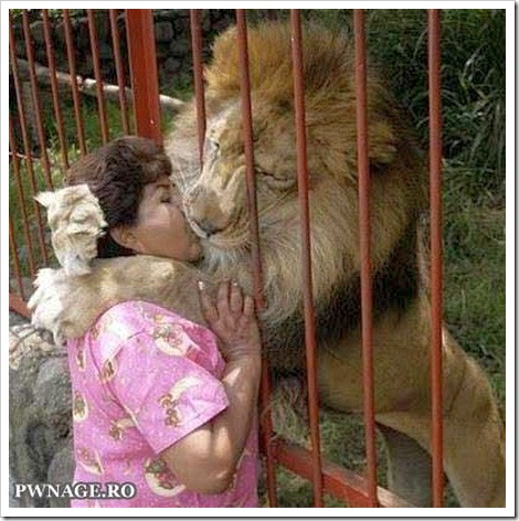 Woman kisses lion.