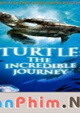 Hành Trình Vĩ Đại Của Loài Rùa Vietsub