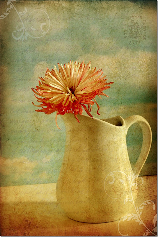 jug with Georgianna texture for web