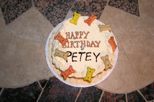 81 percent of dog parents surveyed have celebrated their pets birthday at least once, and 77 percent have admitted to buying their dog a present for their special day.