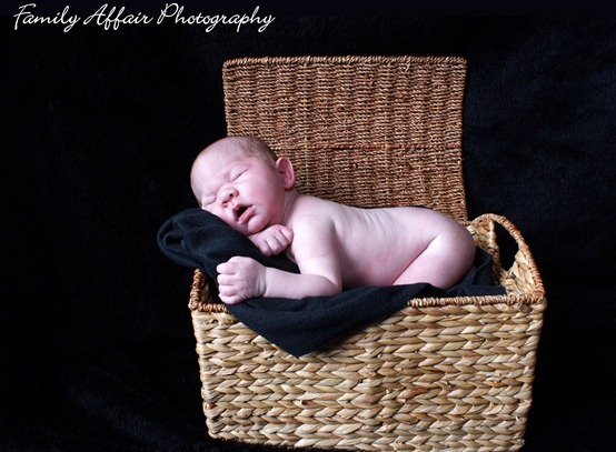 Tacoma Newborn Portrait Photographer - 6