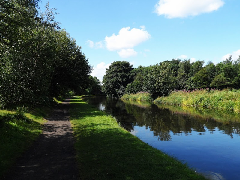The Canal in shade