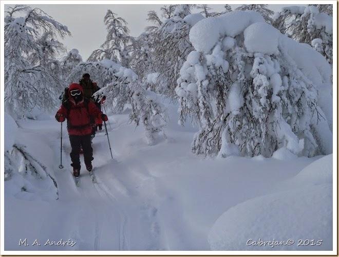 fotos de laponia 2011 lago inari y parque urho kekosen 320