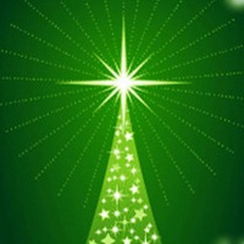 Um Feliz e Iluminado Natal aos Médicos Veterinários