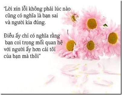 xinloi