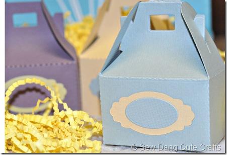Blue-treat-box