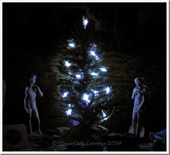 12-03-bdrm-tree