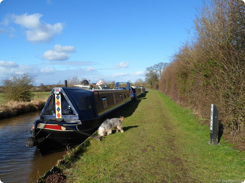 SAM_0038 Moored on Prees Branch