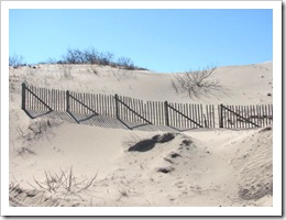 3.22.2012 Provincetown fence and dunes