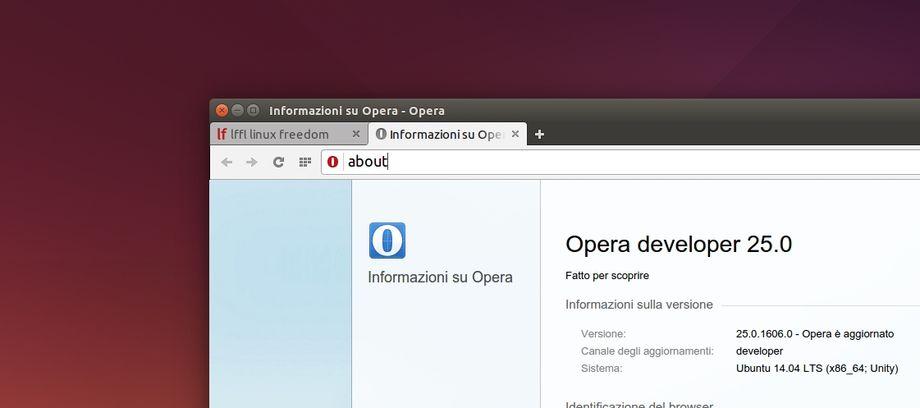 Opera 25 Developer