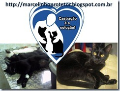 marcelo_protetor (7)
