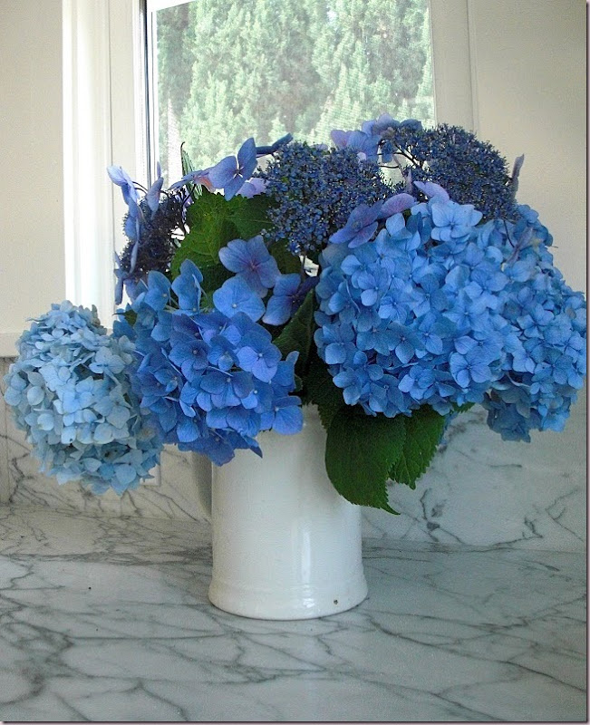 HAPPY FATHER'S DAY! Hydrangea Bouquet