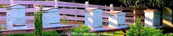 mast farm inn bees 2