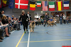 20130510-Bullmastiff-Worldcup-1164.jpg
