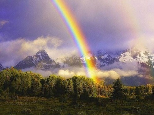 Rainbow-009