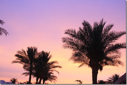Egypt 957
