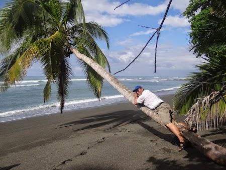 27. Pe palmier.JPG