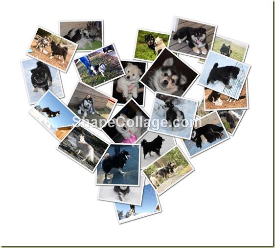 121229 A-kullet collage hjerte 2