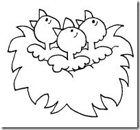 nido-de-pajaritos