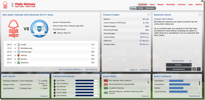 Customized profile view in FM 2013