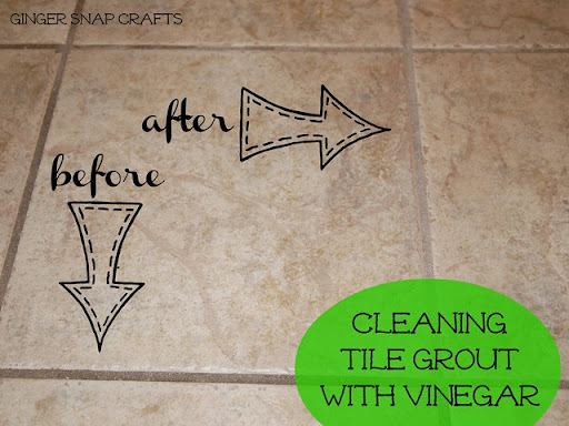 Ginger Snap Crafts Cleaning with Vinegar tips tricks