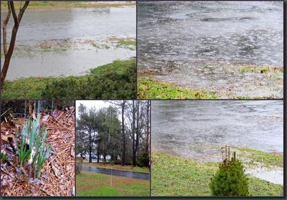 rainfall1