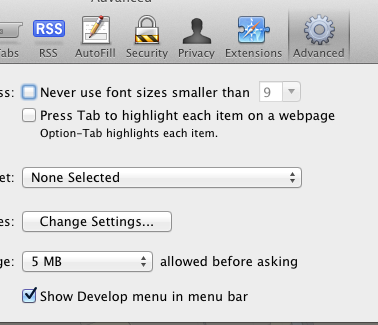 Enable Develop Menu Bar