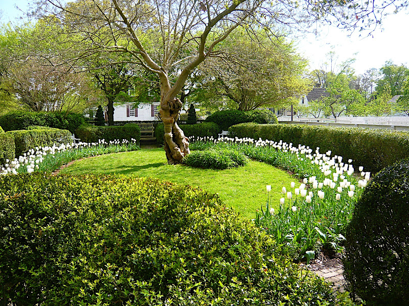 Williamsburg Garden Tour Highlights - Martha Stewart Living Radio ...