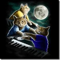gato pianista (1)