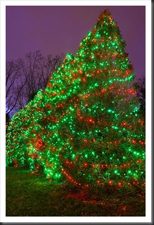 2011Dec31-Brookside-Gardens-60