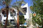 Фото 7 Al Diwan Resort