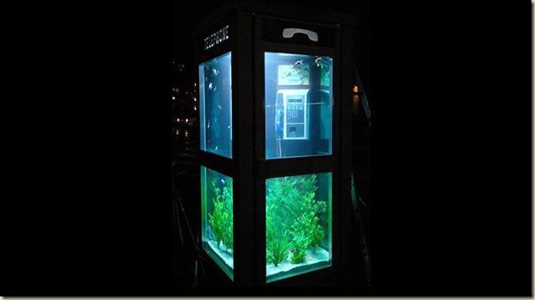 Aquariums créatifs et insolites-010