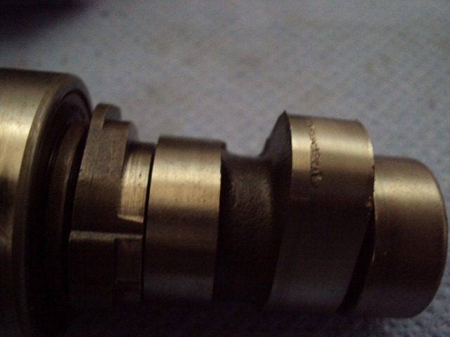 DSC01336_small