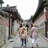 western ladies at bukchon hanok village in Seoul, Seoul Special City, South Korea