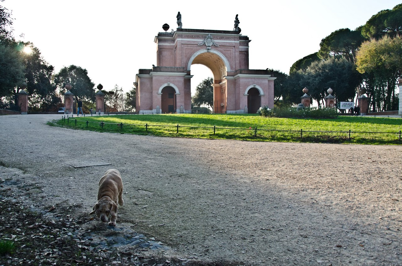 Chewy at Villa Doria Pamphilj