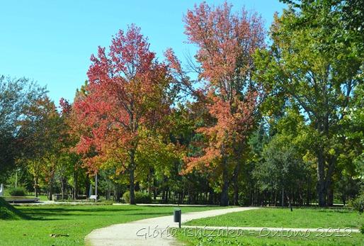 Glória Ishizaka - Folhas de Outono - Portugal 26